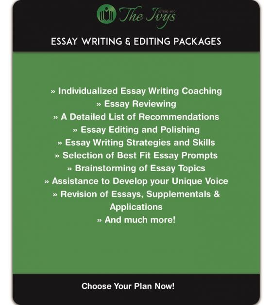 essay writing and editing packages